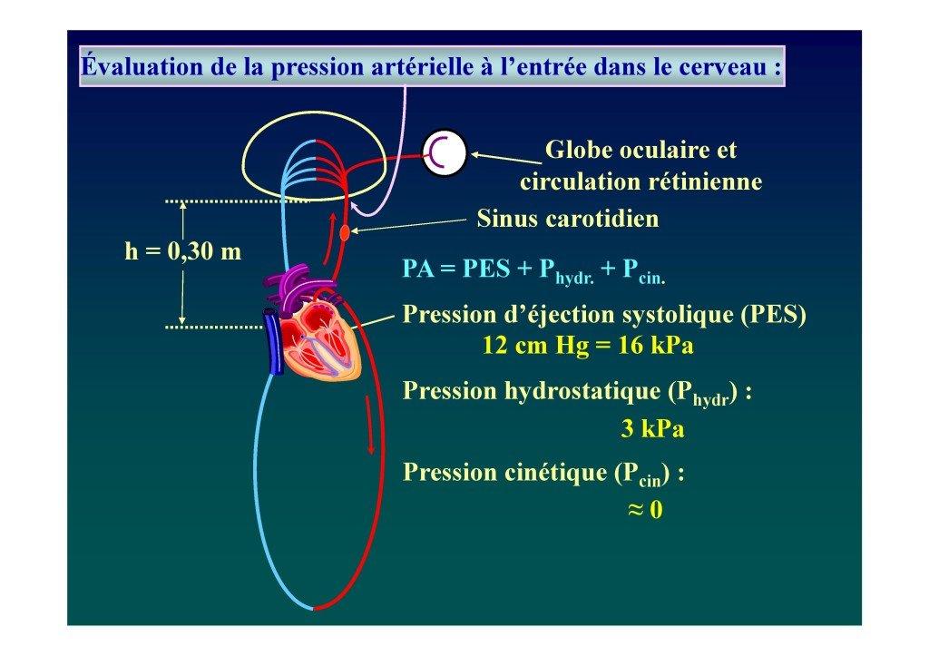 Le voile en voltige aérienne (Dr. Deschamps-Berger-page-018