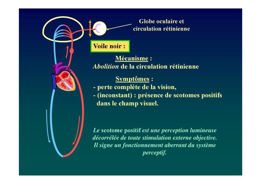 Le voile en voltige aérienne (Dr. Deschamps-Berger-page-024